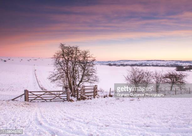 winter sunrise - buckinghamshire stock pictures, royalty-free photos & images