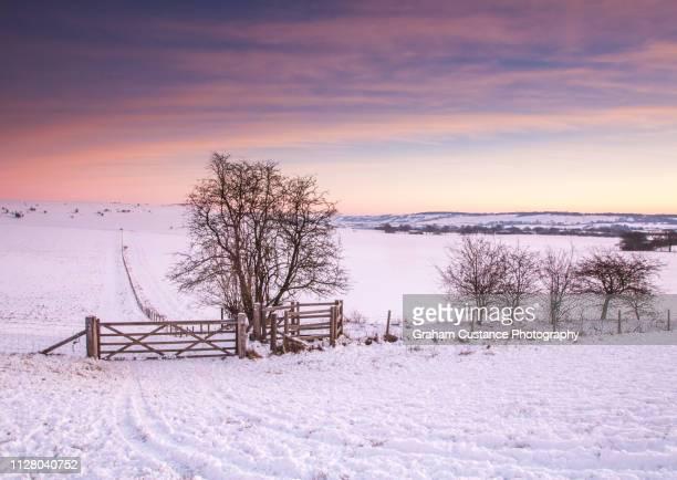 winter sunrise - バッキンガムシャー ストックフォトと画像