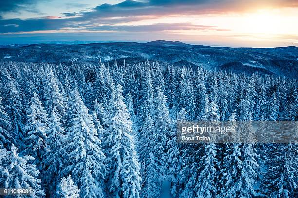 nascer do sol de inverno  - coberto de neve - fotografias e filmes do acervo