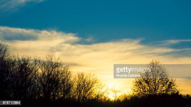 winter sunset in ohio - usa - 一月 ストックフォトと画像