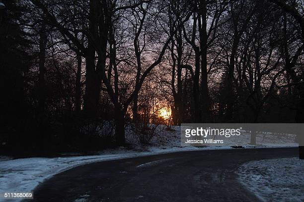 Winter sunset path