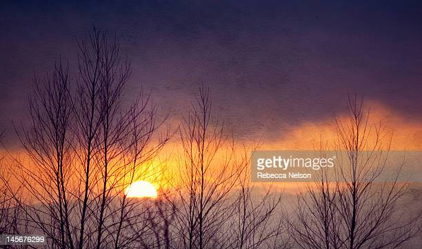 winter sunset - rebecca nelson stock pictures, royalty-free photos & images