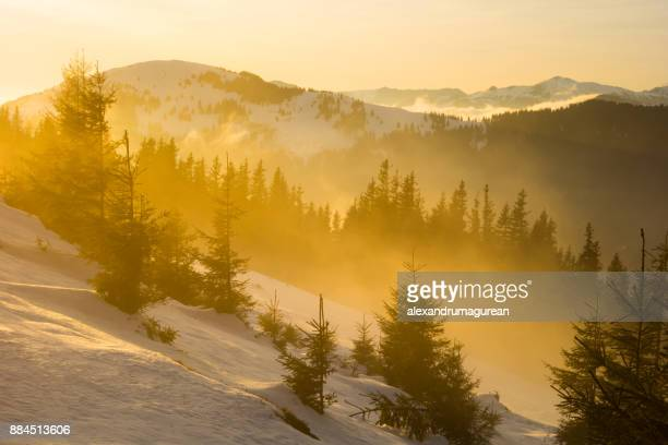 winter sunset - february background stock pictures, royalty-free photos & images