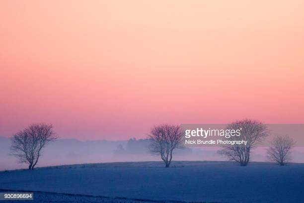 winter sunset - dusk dark photos et images de collection