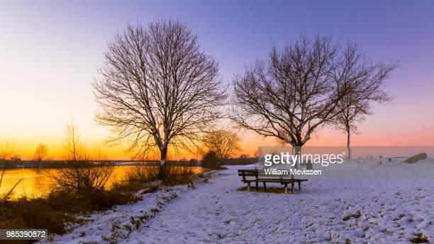 winter sunset - william mevissen - fotografias e filmes do acervo