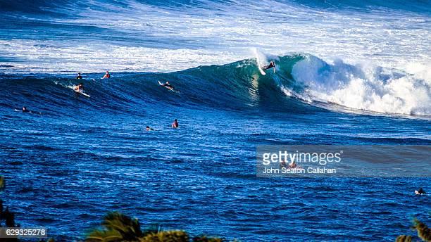 winter surfing at sunset beach - haleiwa - fotografias e filmes do acervo
