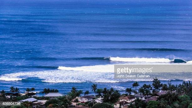 winter surfing at sunset beach - image title stock pictures, royalty-free photos & images