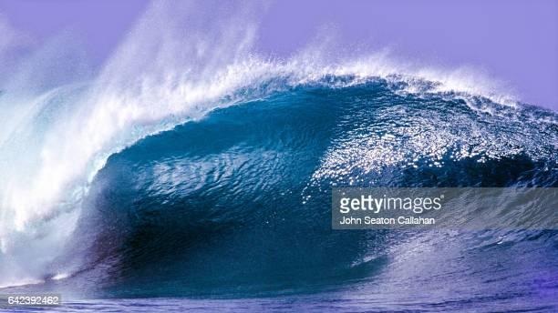winter surfing at the pipeline - haleiwa stock photos and pictures