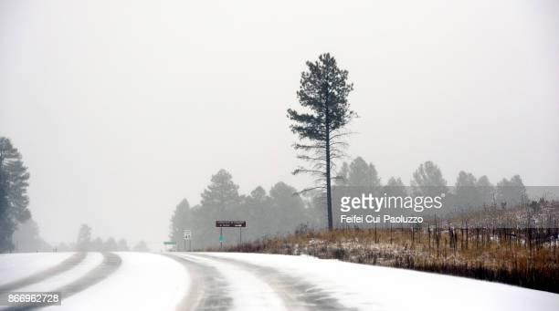 Winter time at Flagstaff, Arizona, USA