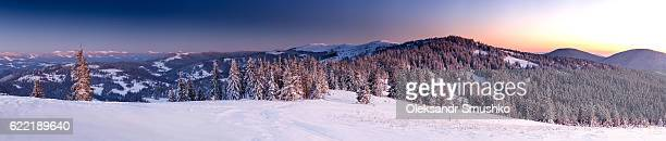 Árboles de invierno en las montañas cubiertas de nieve fresca