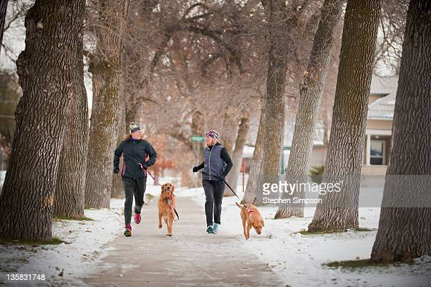 Winter, two women out for a run with their dogs