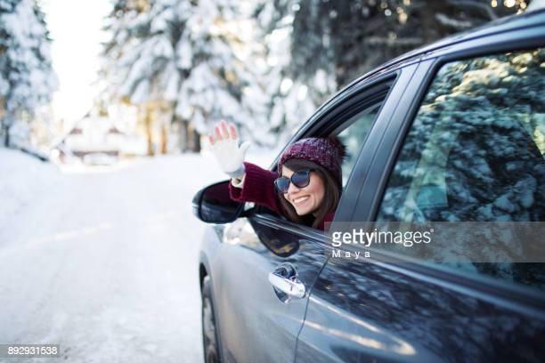 winter vacation - pinaceae stock photos and pictures
