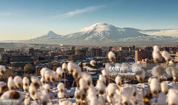 winter view of mount ararat and yerevan, armenia - yerevan stock pictures, royalty-free photos & images