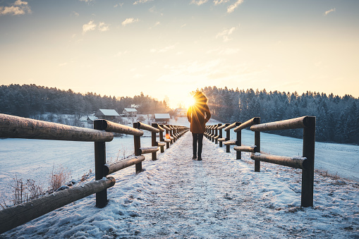 Winter Walk 1051207682