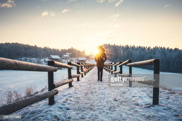 winter walk - sunlight stock pictures, royalty-free photos & images