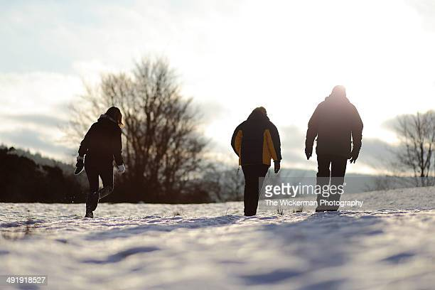 winter walk - wickerman festival stock pictures, royalty-free photos & images