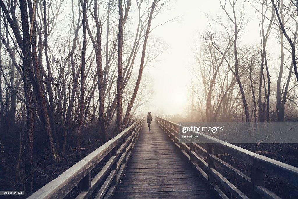Winter Walk : Stock Photo