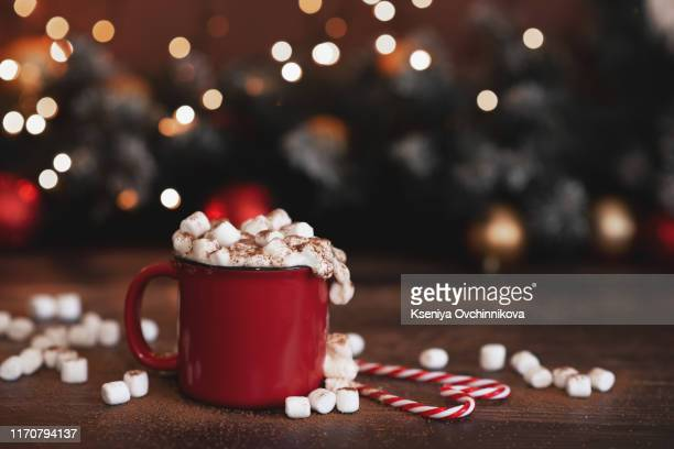 winter whipped cream hot coffee in a red mug with star shaped cookies and warm scarf - rural still life - hot chocolate stock pictures, royalty-free photos & images