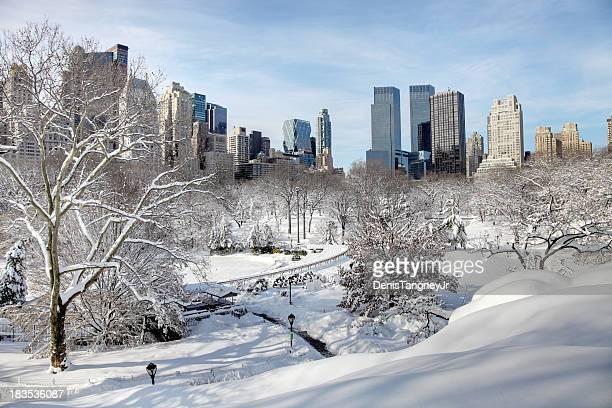 el paraíso invernal en central park - february fotografías e imágenes de stock