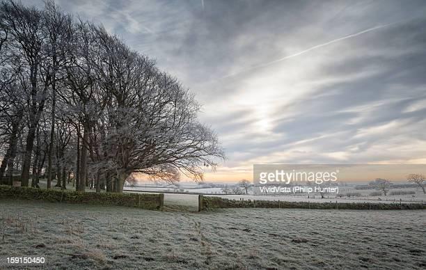 winter wonderland - オトレイ ストックフォトと画像