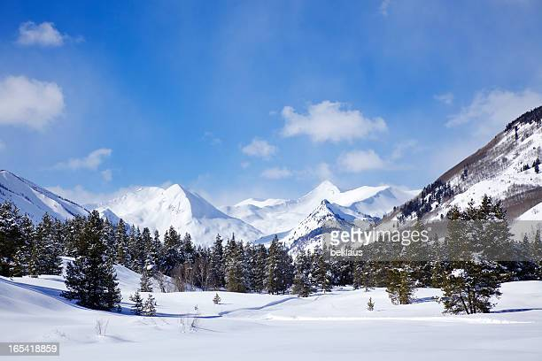 winter wonderland - aspen colorado stock photos and pictures