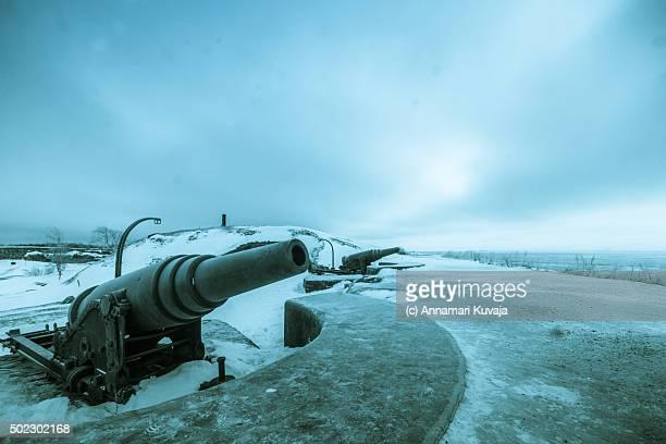 winter wonders - 大砲 ストックフォトと画像