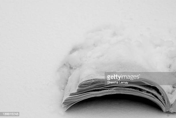 Wintered book