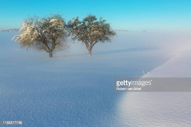 winteridylle - bayern stock pictures, royalty-free photos & images