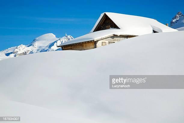 winterlandschaft - lucyna koch stock-fotos und bilder