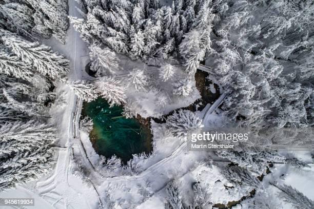 winterlicher wald mit see - luftaufnahme - luftaufnahme - fotografias e filmes do acervo