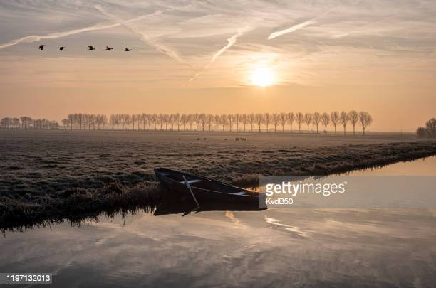winterochtend in de polder - back lit stock pictures, royalty-free photos & images