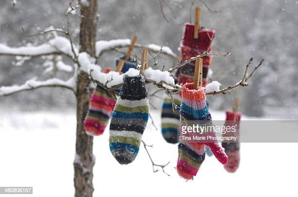 winter's mitten tree - mitten stock pictures, royalty-free photos & images
