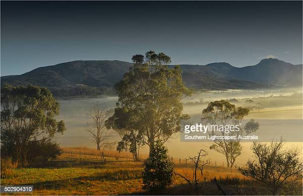 Winter's morning with mist rising at dawn in the Huon Valley in southern Tasmania.