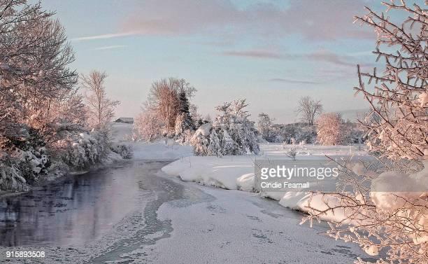 Winter's Splendor