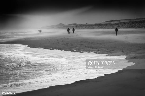 winterstorm on sylt, germany - winter_storm stock pictures, royalty-free photos & images