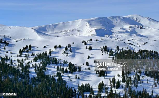 Wintertime along the Continental Divide - Colorado