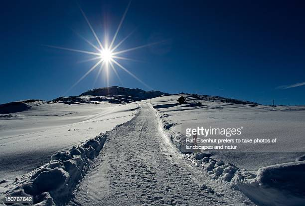 winterway to the sun - natur stock pictures, royalty-free photos & images
