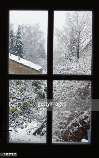 Winter-Window