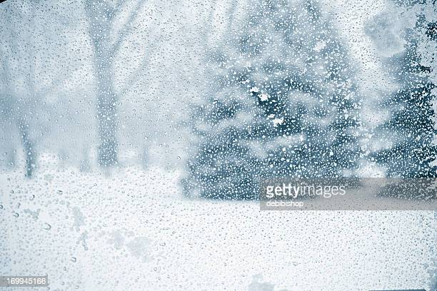 Wintery Forest Through Wet And Snowy Glass