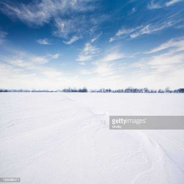 wintry landscape - horizon over land stock photos and pictures