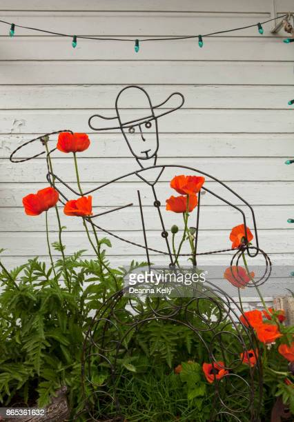 Wire Cowboy, Poppies and Green Party Lights