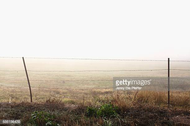 Wire fence in fog