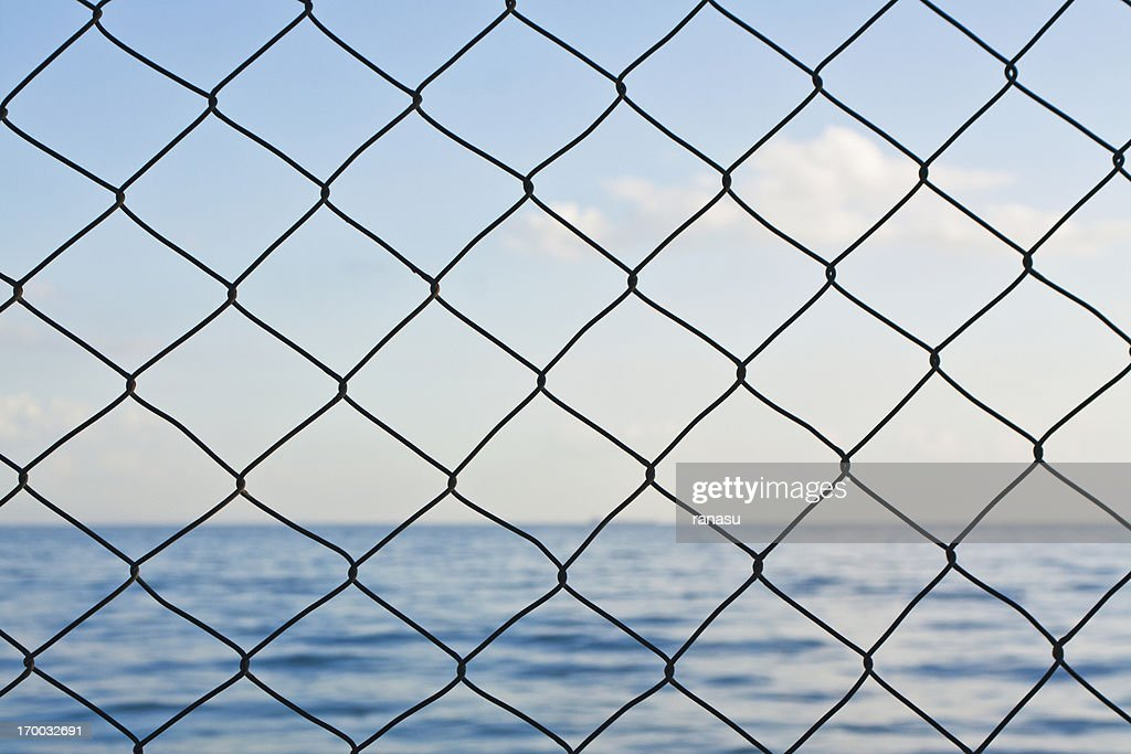 Wire netting : Stockfoto