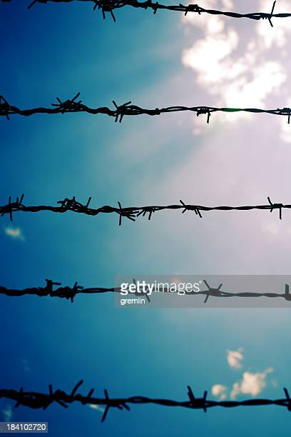 wire - concentration camp stock pictures, royalty-free photos & images