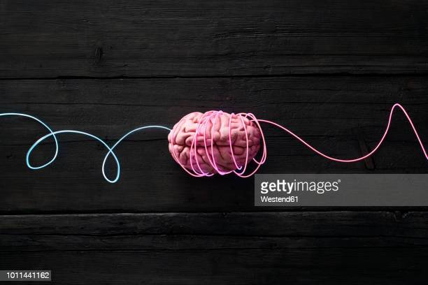 wired brain, symbol for deep learning - big brother orwellian concept stock pictures, royalty-free photos & images