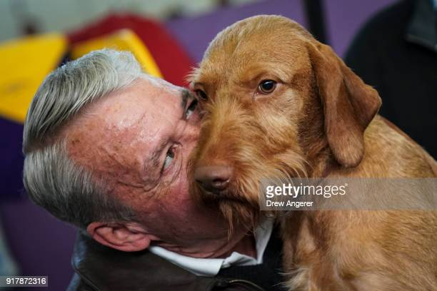Wirehaired Vizsla gets affection from its owner in the grooming area at the 142nd Westminster Kennel Club Dog Show at The Piers on February 13 2018...