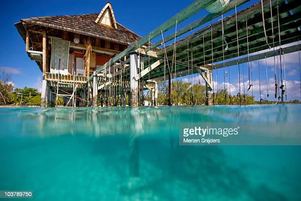 wires supporting grids of pearl shells below water surface at havaiki pearl guesthouse. - merten snijders stockfoto's en -beelden