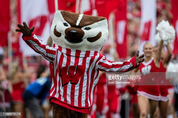 Wisconsin Badger mascot Bucky Badger runs out of the tunnel before the rest of the football team is introduced before a college football game between...