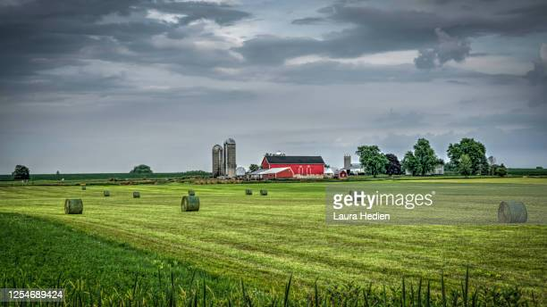 wisconsin barn on rural hillsides - wisconsin stock pictures, royalty-free photos & images