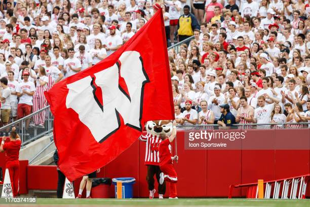 Wisconsin cheerleader and mascot Bucky Badger celebrate a Wisconsin touchdown during a Big Ten college football game between the University of...